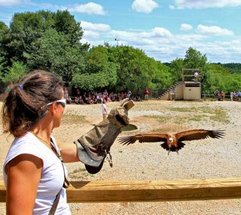 Le Rocher des Aigles à Rocamadour